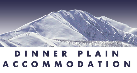 Dinner Plain Accommodation Service Logo